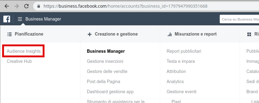 come accedere ad audience insight